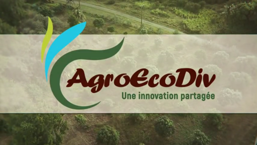 Projet AgroEcoDiv