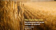 DataHarvest_Report