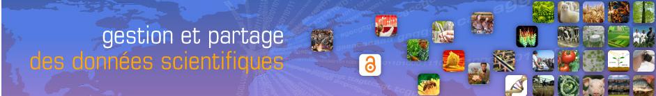 datapartagebandeau